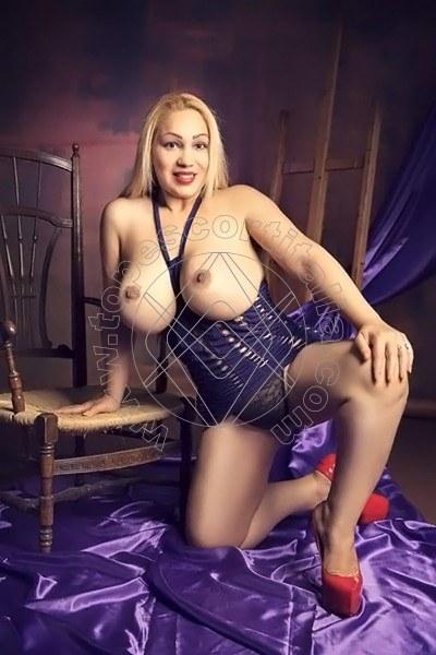 Barbara New FORLI 3389764732